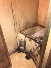 白石区マンション室内塗装・浴室塗装・美装工事